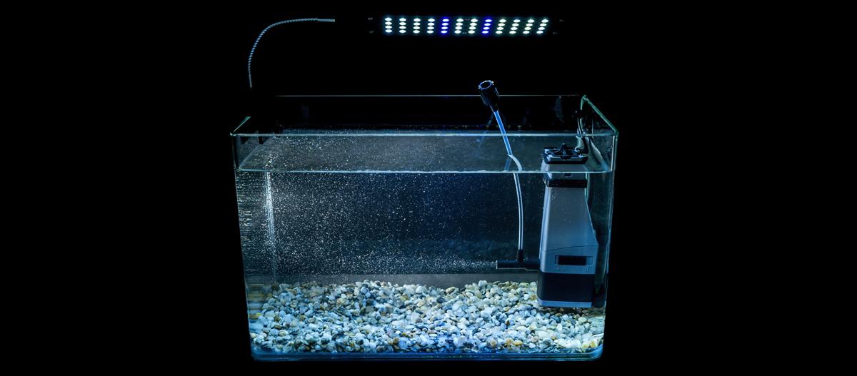 Ein leeres beleuchtetes Aquarium.