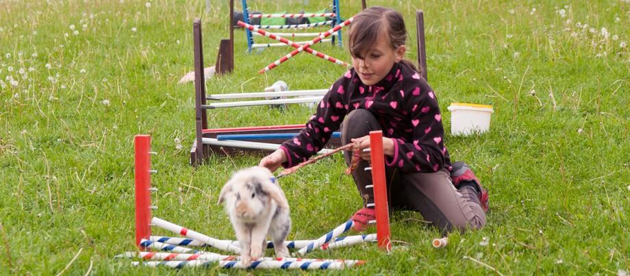 Ein Kind übt mit seinem Kaninchen Agility.