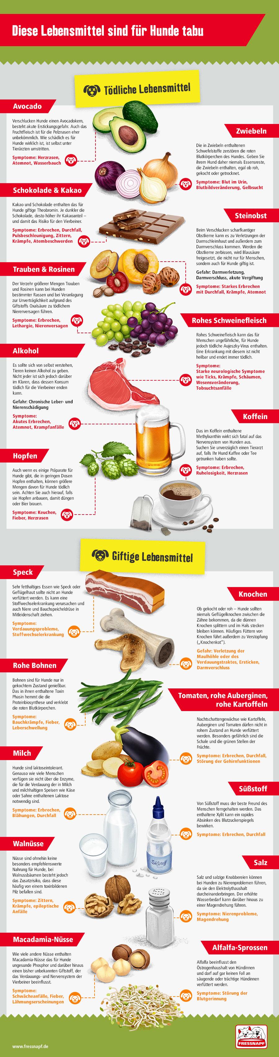 Hundefutter Selber Kochen Rezepte Fressnapf