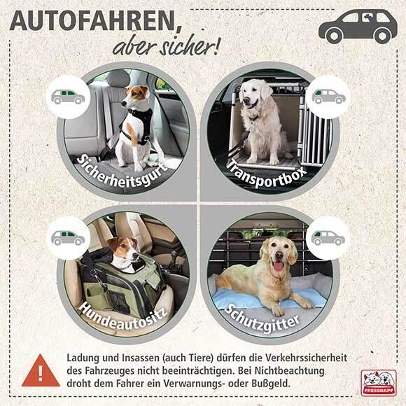 Grafik zu Sicherheit im Auto.