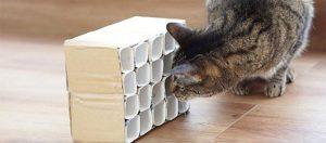 Anleitung DIY Spielzeug für Katzen.