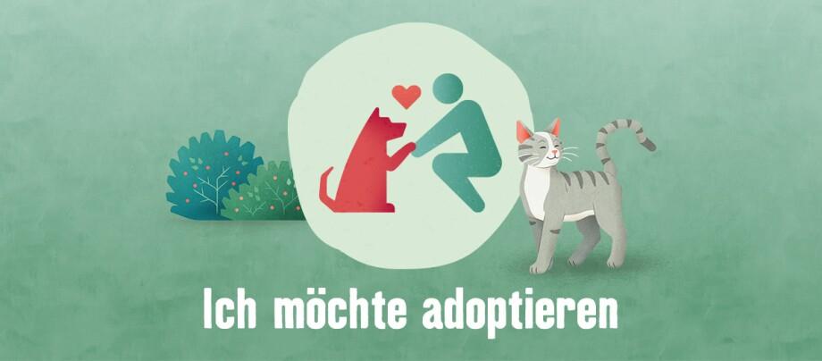 Tierisch engagiert adoptieren