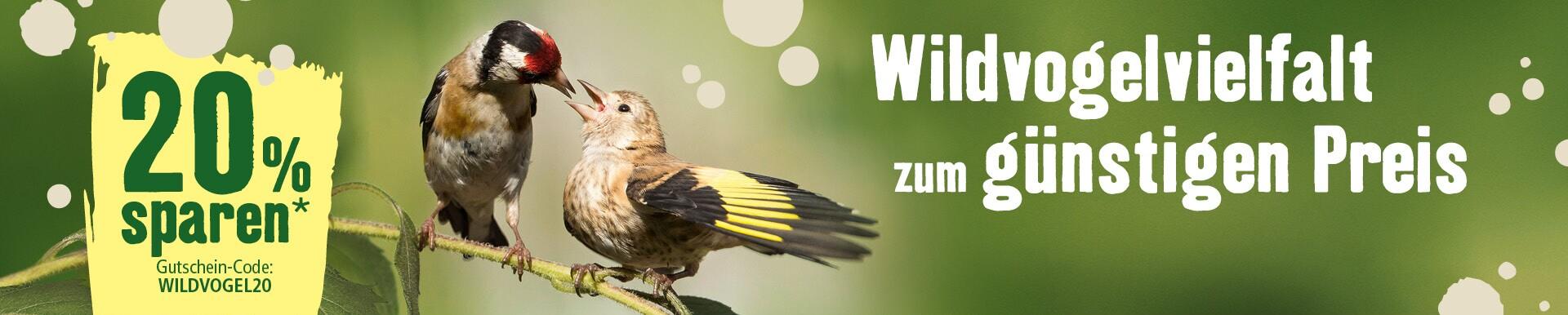 20% Gutschein - Wildvogelvielfalt zum günstigen Preis