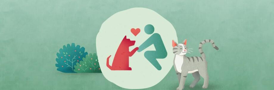 Tierisch engagiert Tiere aus dem Tierheim adoptieren