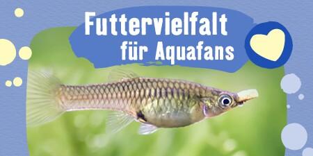 Futtervielfalt für Aquarien