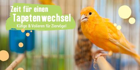 Vogelheim Tapetenwechsel