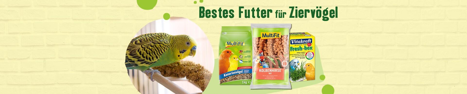 Bestes Futter für Ziervögel
