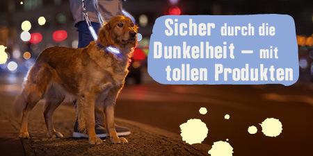 Sicher durch die Dunkelheit mit Hund - mit Leuchthalsbändern, Leuchtanhängern und Co.