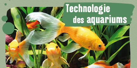 La technologie des aquariums