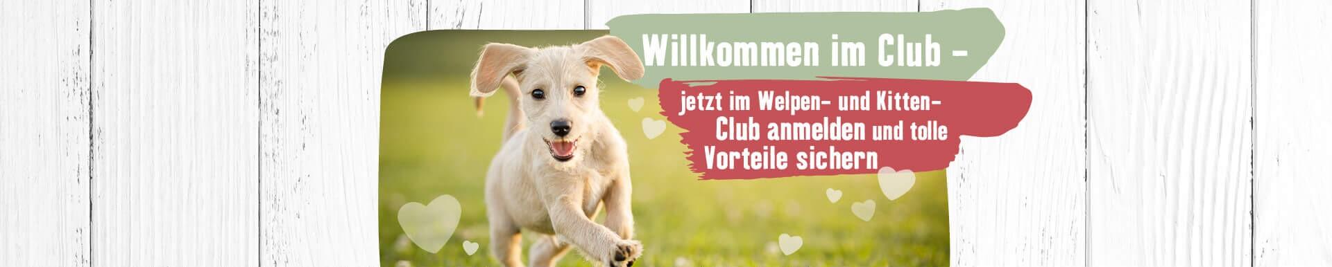 Willkommen im Welpen-Club