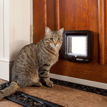 Lifestyle-with-microchip-cat-flap-2.jpg