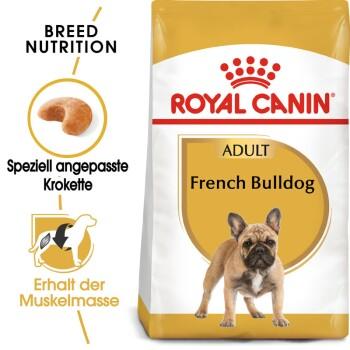 Französische Bulldogge Adult 1,5kg