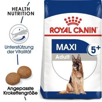 Maxi Adult 5+ 4kg