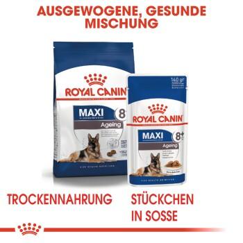 Maxi Adult 5+ 15kg
