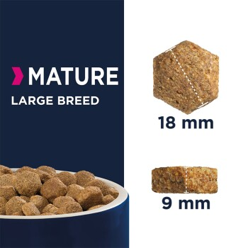 Mature & Senior Large Breed 15kg