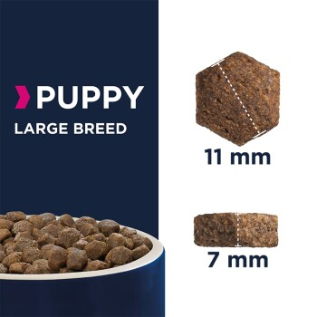 Puppy Large Breed 15kg