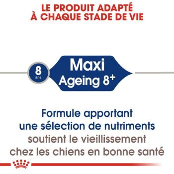 Maxi Ageing 8+ 2x15kg