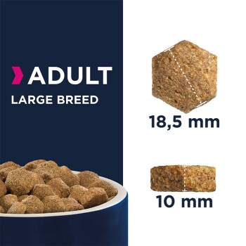 Adult Large Breed Kurczak 15kg