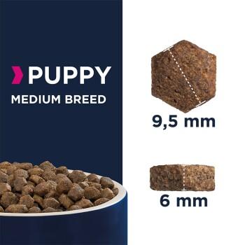 Puppy Medium Breed 3kg