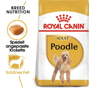 Poodle Adult 1,5kg