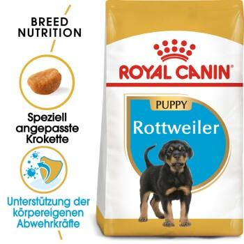 Rottweiler Puppy 12kg