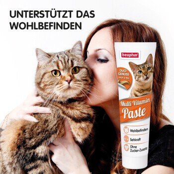 Multi Vitamin Paste Katze 250g