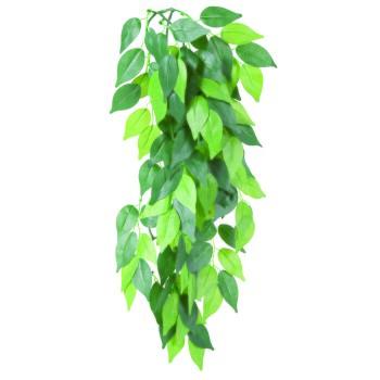 Reptiland Seiden-Hängepflanze Ficus 20 × 50 cm