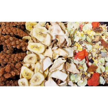 Food Rennmaus Adult 500g 500g