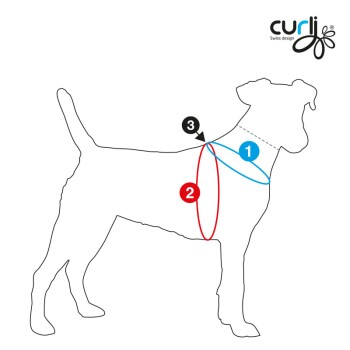 Dog-sizechart-illustration-for-curli-Harness.jpg