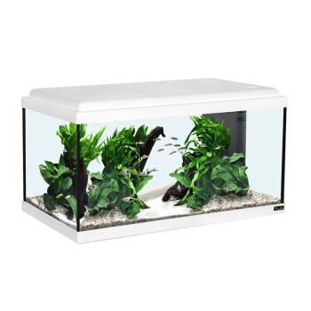Aquarienset LED weiß