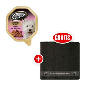 Mini-Filet 24x150g + gratis Pfotenhandtuch Kalb & Truthahn
