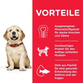 Canine Puppy Large Breed 14,5kg
