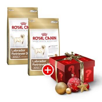 Labrador Retriever 30 Adult Sparpaket 2x12kg + gratis Weihnachtsüberraschung