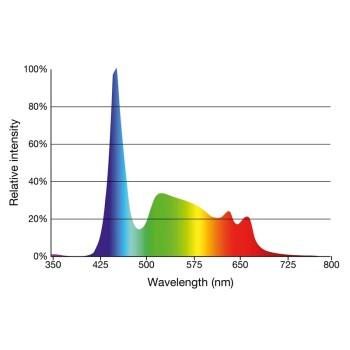 LED daylight sunrise 360 mm und 8,1 Watt