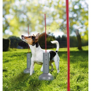img_1235525_AniOne_Agility_Set_Slalomparkur.PNG