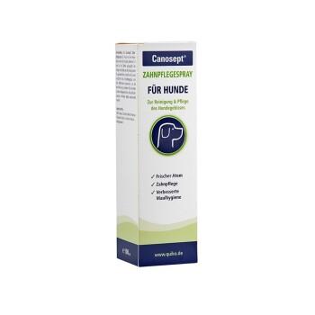 Zahnpflege Spray 100 ml