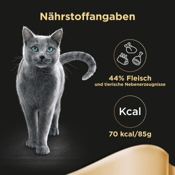 Selection in Sauce 12x85g Geflügel Variation