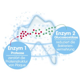 1274741_Dental ICON Enzym.jpg