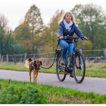 Fahrradleine