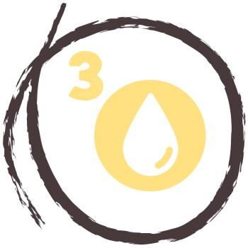 RAW KITCHEN 5-Pflanzen-Öl 250ml