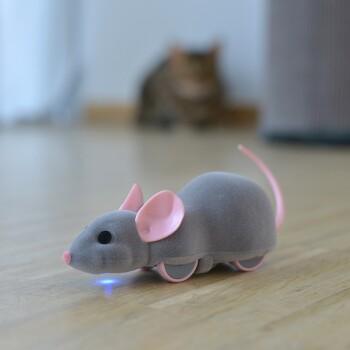 Mouse Racer controllato da app