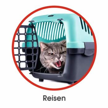 Dispositif de relaxation RelaxoPet pour chien et chat 5V argent/rouge