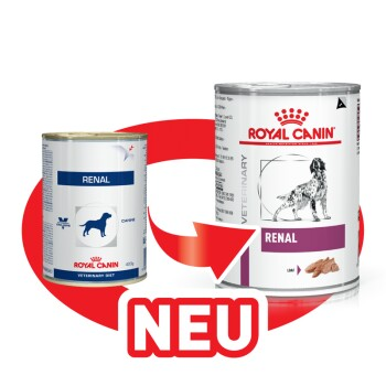 Veterinary Diet Renal 12x410g