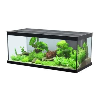 Style 100 Aquarium 2.0 schwarz