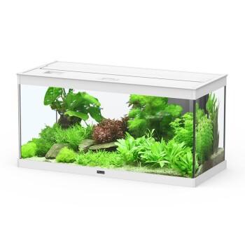 Style 80 Aquarium 2.0 weiß