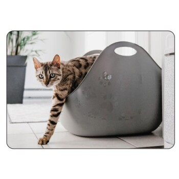 LitterLocker LitterBox grau