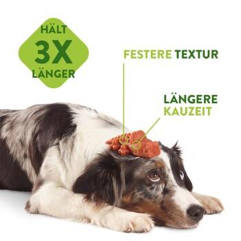 Zahnpflegesnacks Veggie Sausage Klein 24+4 Stück