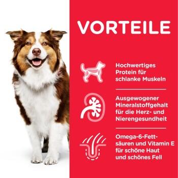 Canine Mature Adult 7+ Senior Huhn 14kg