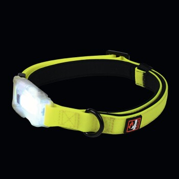 Collare luminoso Polar S