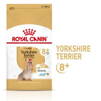 Yorkshire Terrier 8+ für ältere Hunde 3kg